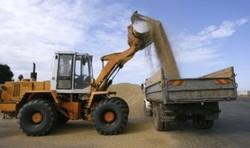 Кузбасский АПК в 2013г получит 1,5 млрд. руб. господдержки