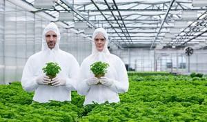 Почему общество не доверяет новым биотехнологиям