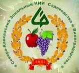 НИИ Виноградорства