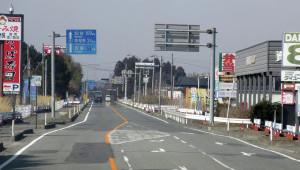 В японской префектуре Фукусима построят электростанцию на биомассе