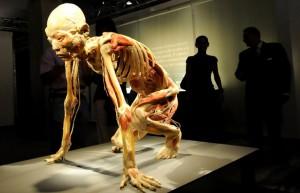 Промышленное производство биополимера для 3D-печати костей будет создано к 2017 году