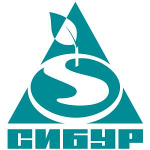 Общество с ограниченной ответственностью «СИБУР», Публичное акционерное общество  «СИБУР Холдинг»
