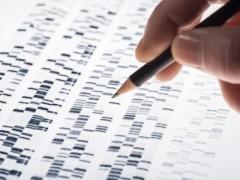 Количество расшифрованных вирусных геномов увеличили в 10 раз