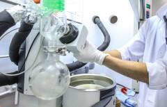 Ульяновские ученые создадут эквивалент кожи человека для трансплантаций в 2016 году
