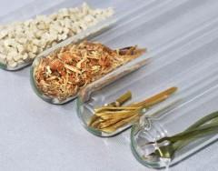 Страны Азии наращивают использование биомассы