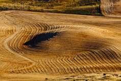 Как воронежские предприниматели привлекли ученых, чтобы помочь аграриям