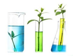 Симпозиум по зеленой химии пройдет в рамках юбилейной выставки «Химия» в Экспоцентре