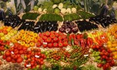 Взяла старт 17-я Агропромышленная выставка «Золотая осень — 2015»