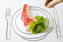 Продажи искусственного мяса начнутся в ближайшие пять лет