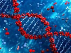 Технология редактирования генома CRISPR — научный прорыв года по версии журнала Science