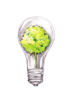 Энергоснабжение с курсом на «био»