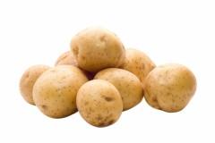 Генно-модифицирования картошка уменьшит применение пестицидов на 90%