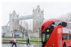 Лондонские автобусы переходят на биотопливо