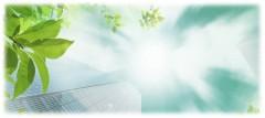 10 февраля начнется практико-ориентированный межфакультетский учебный курс экономического факультета «Зелёная экономика: эко-инновации для устойчивого развития университета и города»