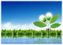 8 июня 2017 г. в Москве в рамках выставки «вэйсттэк» состоялась конференция «энергия из биомассы: котельные и тэц на биотопливе, производство пеллет, брикетов, биогаза в россии и мире»