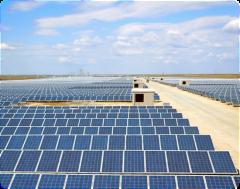 В Израиле построят первую электростанцию на био-отходах