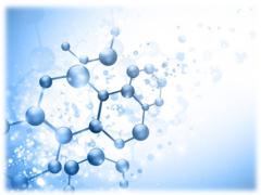 Молодежная научная школа «Перспективные направления физико-химической биологии и биотехнологии»