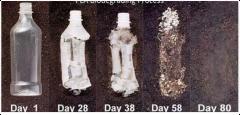 Рынок биопластиков достигнет 30,8 миллиардов долларов к 2020 году
