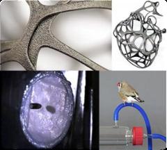 Биоискусство: проектируя пуленепробиваемую кожу и каркас для пересадки органов с помощью паутины из козьего молока
