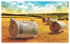 АЦБК предлагает разработать меры господдержки лесопромышленных кластеров, развивающих «зелёную экономику»