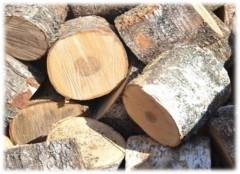 Комитет лесного хозяйства Московской области планирует создать котельную на порубочных остатках