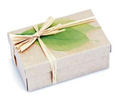 Рынок зеленой упаковки будет расти с 2016 по 2020 на 7,35% в год