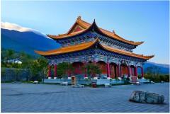 Китай лидирует в мире по количеству патентов на биотехнологические изобретения — АНК