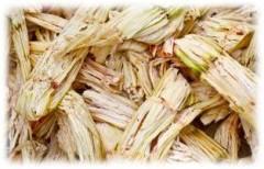 Cosan собирается производить пеллеты на основе биомассы сахарного тростника