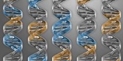 Как создать клетку с генами, необходимыми для самостоятельной жизни
