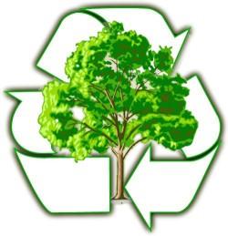 На конференции в СВФУ пройдет выставка вторичного сырья «Рециклинг отходов»