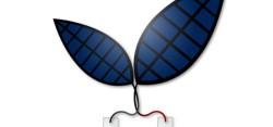 Новый искусственный лист превращает солнечный свет в топливо с революционной эффективностью
