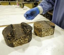 Фекалии и навоз могут заменить нефть при производстве битума