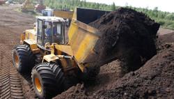 В России будут стимулировать использование торфа в энергетике
