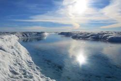 Учёные Бристольского университета раскрыли секрет крохотного арктического микроба, формирующего поверхность ледников