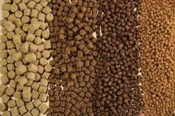 По итогам 2015 года российский рынок комбикормов для аквакультуры оценочно составил 191,9 тыс. тонн — Abercade