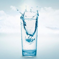 Появилась первая экологически чистая водка