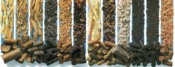 Пеллеты изотходов льна начали производить вОшмянах