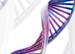 Мнение учёного: война против ГМО имеет, скорее, экономические корни