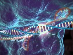Ученые создали новую платформу для редактирования генома