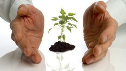 РЦИ «Биотех» приглашает предпринимателей к сотрудничеству