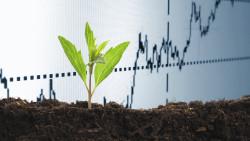 К 2020 году рынок точного земледелия в РФ придет в каждое хозяйство — эксперт
