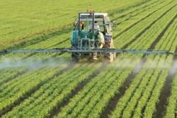 ГК «ЭФКО» продолжает реализацию программы по поддержке отечественных производителей сои