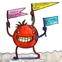 ГМО: бояться нельзя питаться. Биологи знают, где поставить запятую!