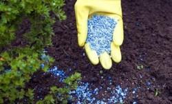 Перспективы стандартизации в отрасли минеральных удобрений