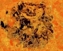 Найдены останки грибов возрастом почти 2,5 млрд. лет
