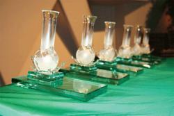 Dow Chemical и и Koehler Paper Group получили награду в области зеленой химии