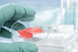 В 280 магазинах США появится искусственное мясо