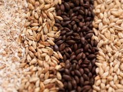 В Минсельхозе России обсудили вопросы развития рынка глубокой переработки зерна