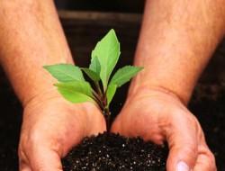 В Белгородской области построят Центр почвосберегающего земледелия