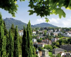 Переработка биомассы выходит на новый уровень: как в Баден-Вюртемберге развивают биоэкономику